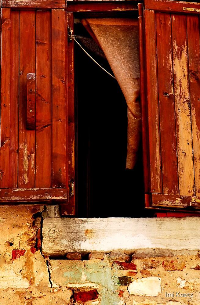 The Window by Imi Koetz