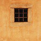 The Barred Window by Imi Koetz