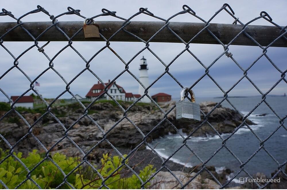 Love Locks of Maine by ElTumbleweed