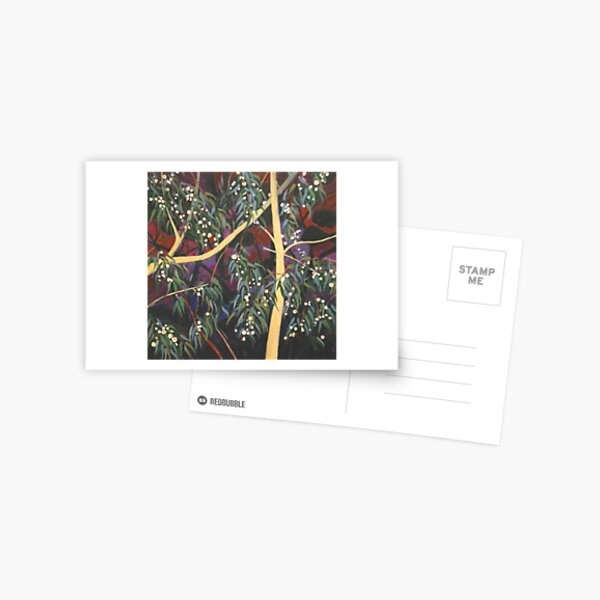 Dream White Gum Flowers At Night Postcard