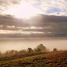 Waterhall Misty Panorama by mikebov