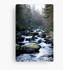 Brook in Ballater Cairngorm Mountains Canvas Print