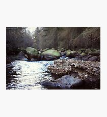 River Through The Forest Photographic Print