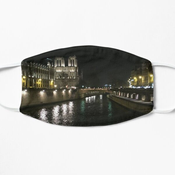 Notre Dame One Week Before the Fire Mask