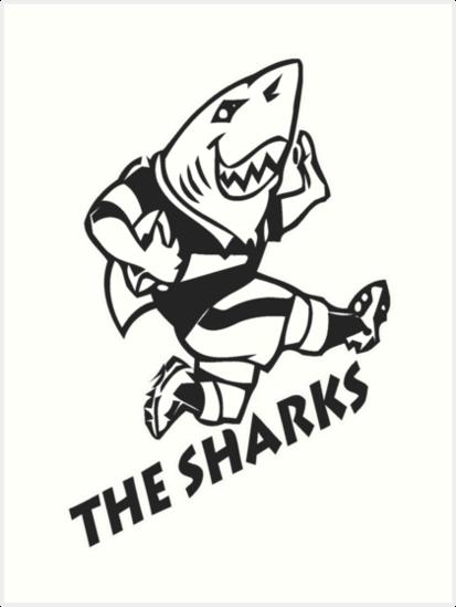 sharks rugby logo png wwwpixsharkcom images