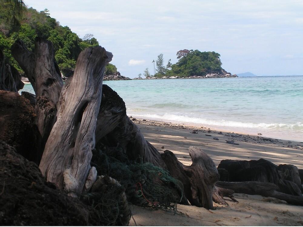 Tioman Island deserted beach by Pollysirena