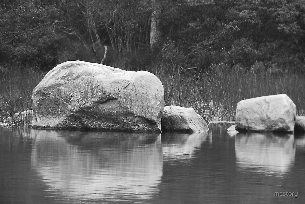 Echo Lake Reflection B&W by Mary Carol Story