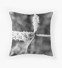 #3 The Truth is We are all bound, As One Throw Pillow