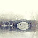 Winter Solitude by Jessica Jenney