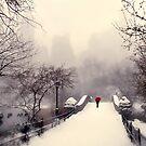 Winter Mist by Jessica Jenney