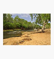 The Katherine River Reserve Photographic Print