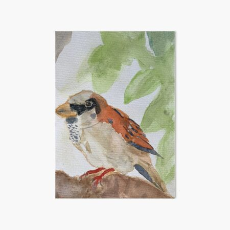 Sparrow - Image for Children, Creativity and Fun Art Board Print