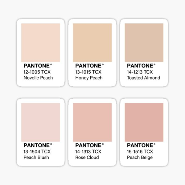 Nude Pink Pantone Color Swatch Pack Sticker