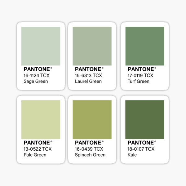 Green Pantone Color Swatch Pack Sticker