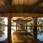 Peter Sinclair Bridge by David Haworth