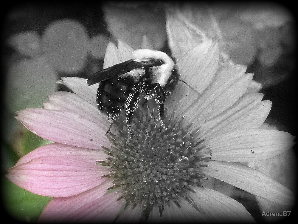 Bumble by Adrena87