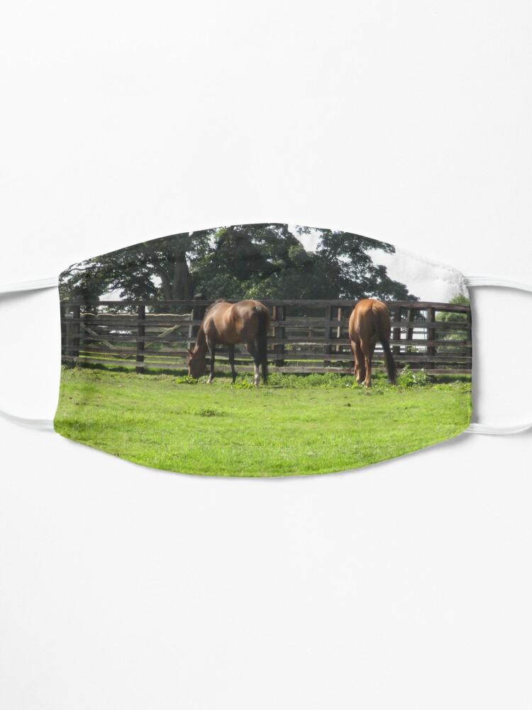 Alternate view of M.I. #74 |☼| Horses - Shot 1 (Hadrian's Wall) Mask