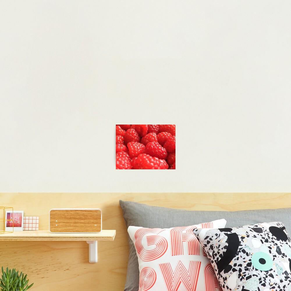 Red Raspberries Photographic Print