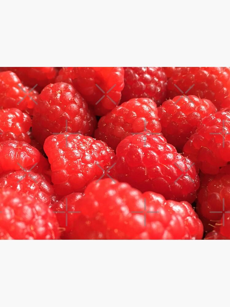 Red Raspberries by RyanDraws