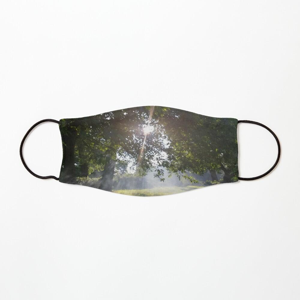 Merch #11 -- Smoky Tree Sun Rays - Landscape Shot (Pearson Park) Mask