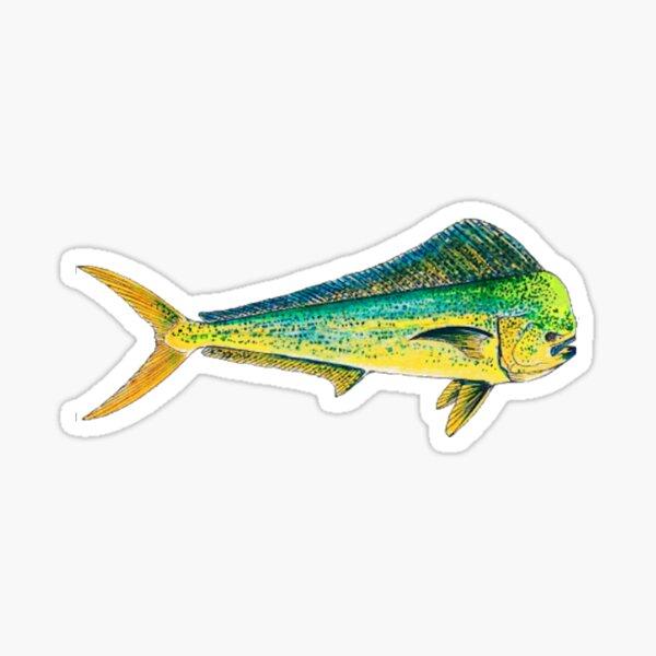 Mahi- Mahi - Dorado - Dolphi Sticker