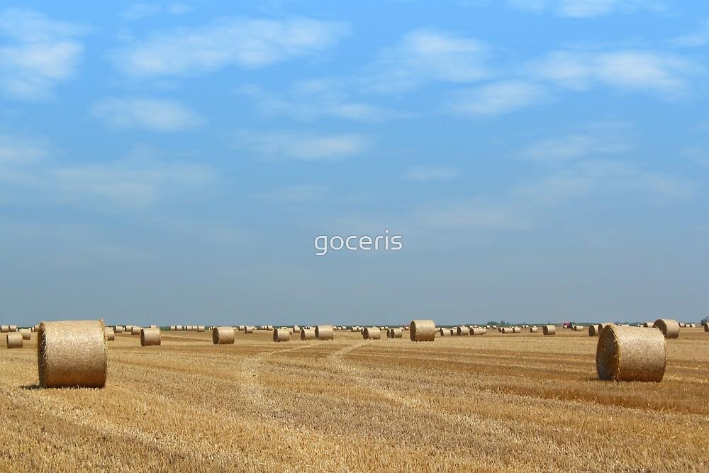 field with straw bales by goceris