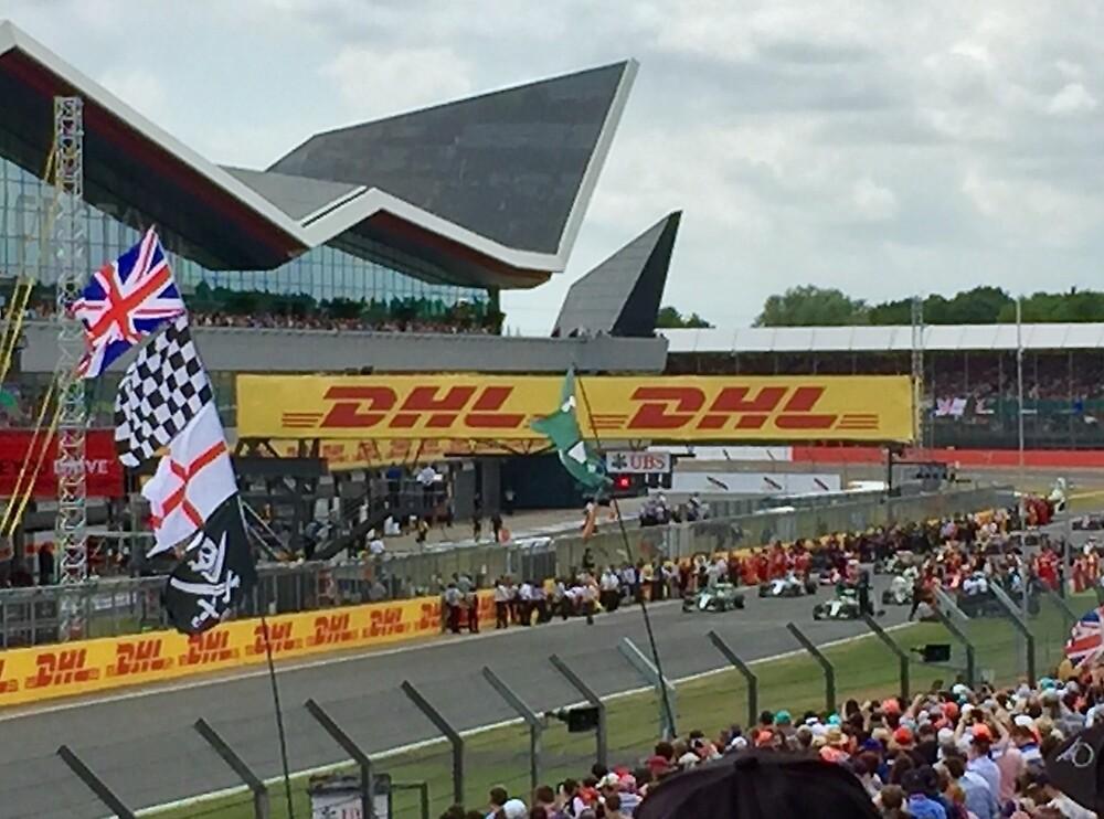 2015 British Grand Prix Silverstone by SunshineLou