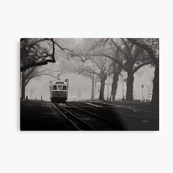 Tram Under the Elms Metal Print