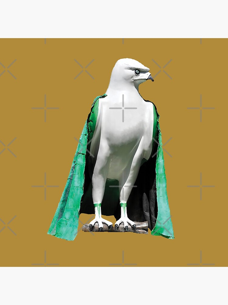 bird of prey by roggcar