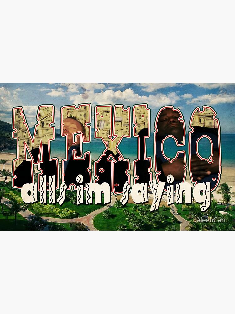 All's I'm Sayin': Mexico by JaleebCaru