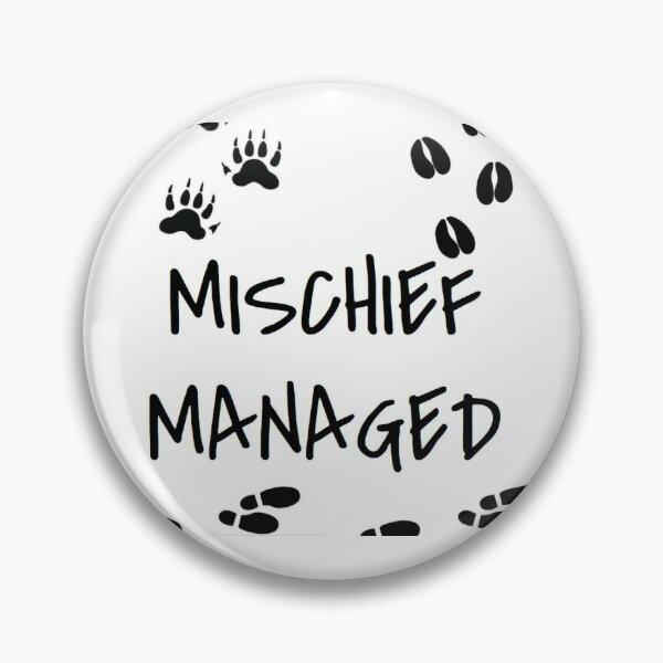 Mischief Pin