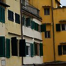 Pontevecchio (Firenze-Italy) by bertipictures