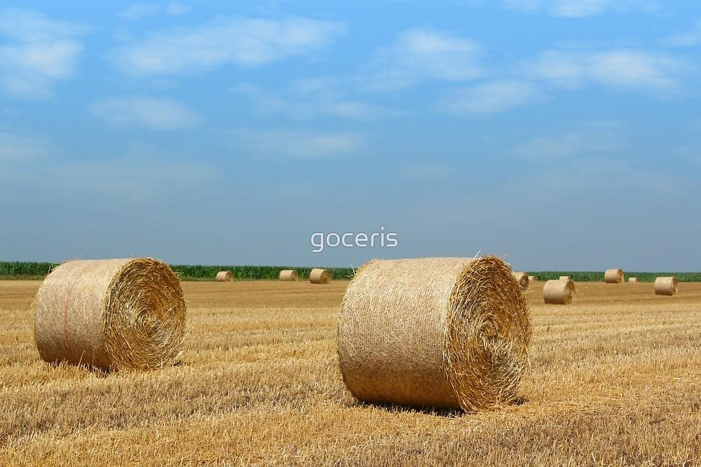 straw bales by goceris