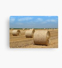 straw bales agriculture industry Canvas Print