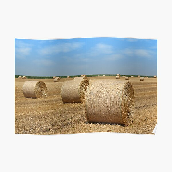 straw bales agriculture industry Poster