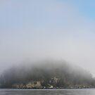 Georgeson Island in Winter Mist by TerrillWelch