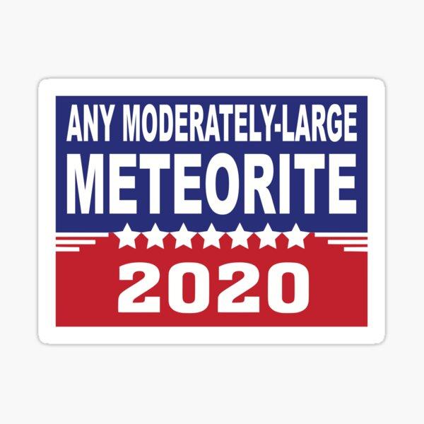 Any Moderately-Large Meteorite 2020 Sticker