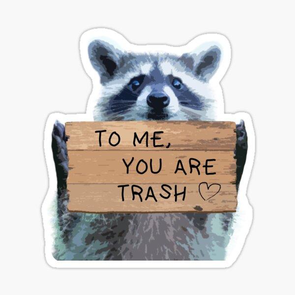 Trash Panda Loves You Sticker
