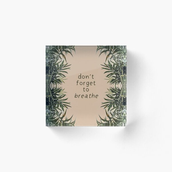 Don't Forget To Breathe | Neutral Plant Quote Acrylic Block