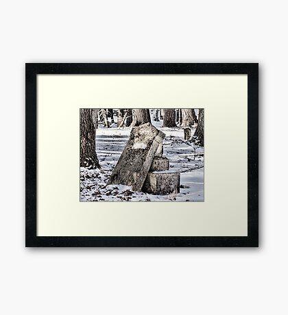 Silent Graves Framed Print