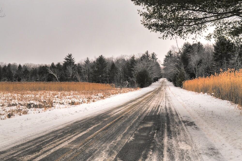 Cold Spring Road in Winter by Geoffrey Coelho