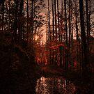 Appalachian Sunset by Ann Eldridge