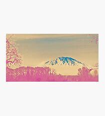 turning japanese Photographic Print