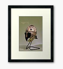 Helmet Framed Print