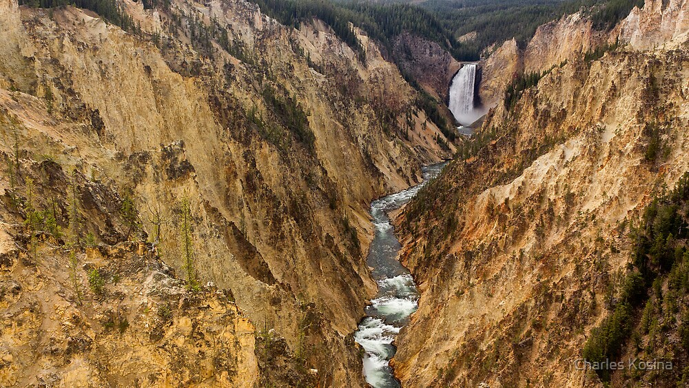 Lower Yellowstone Falls and Canyon by Charles Kosina