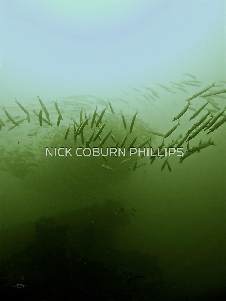 THE COOPERATIVE PREDATOR by NICK COBURN PHILLIPS