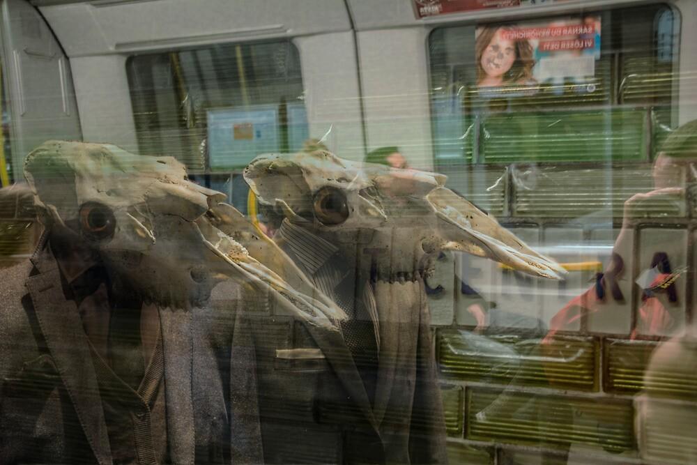 Subway by Steve Björklund