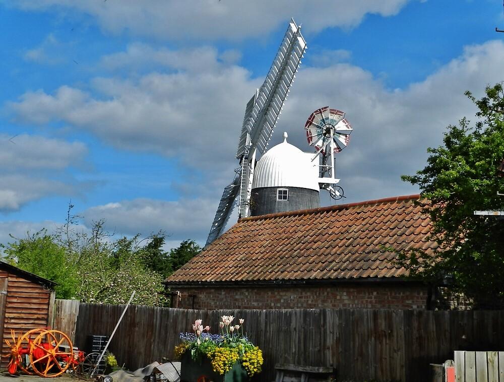 Windmill by TOFFS