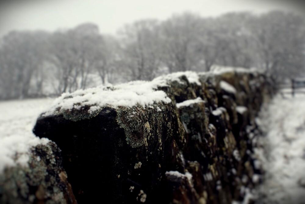 Snowy Wall  by Melissa Orrett