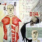 ADVERTENCIA (a warning) by Alvaro Sánchez